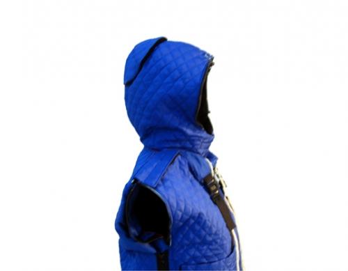 details-hood