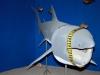 s_zadar_narodni_muzej_zadar_cetorhinus_maximus_2
